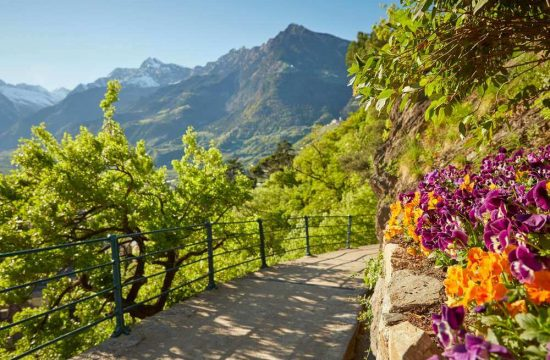 Experience Maranza, Mount Gitsch and Val Giovo in the spring